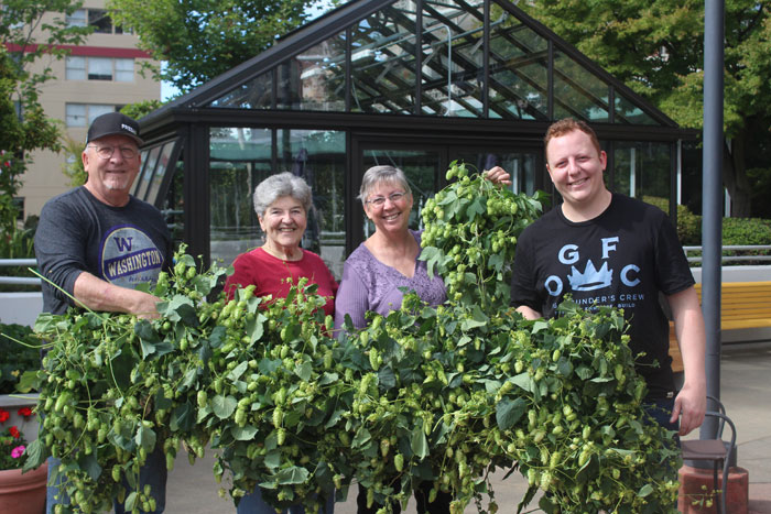Photos by Brandon Macz: Brian Beaumont, Dottie Neufeld, Lynn and Taylor Beaumont hold up the hops they used to brew a pilsner at the Bayview retirement community in Queen Anne on Saturday, Sept. 21.