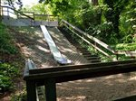Seattle Parks reconsidering removal of popular embankment slide